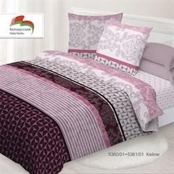 Комплект постельного белья евро Спал Спалыч рис.5360-1+5361-1 Кейли