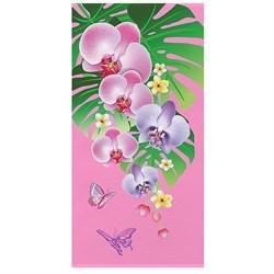 Махровые полот ВТ Цветы м1170_02 L  70*140 роз